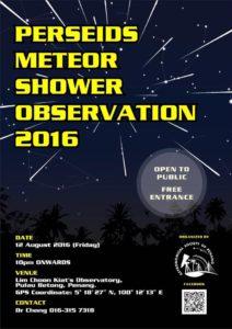 Perseids Meteor Shower Observation